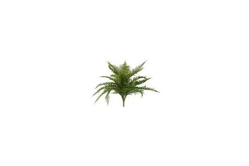 #artificialflowers #fakeflowers #decorflowers #fauxflowers #fernxlarge