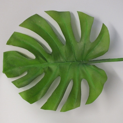 Monstera Leaf large 1819