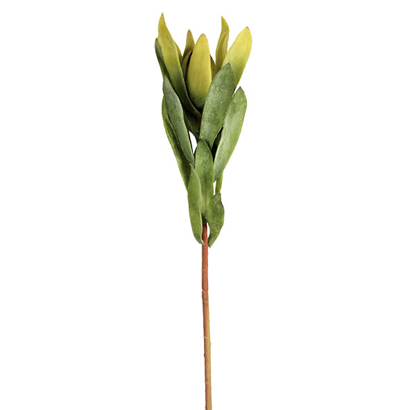 #artificialflowers #fakeflowers #decorflowers #fauxflowers#greenery#leuco