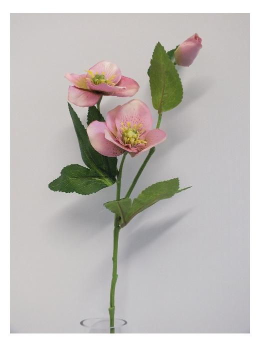 #artificialflowers #fakeflowers #decorflowers #fauxflowers#hellebore