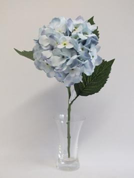 Hydrangea stem Garden Blue 1891
