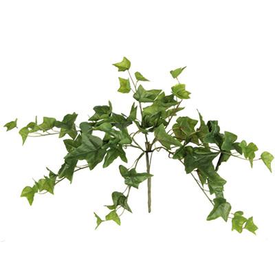 Ivy Trailing Bush 4447