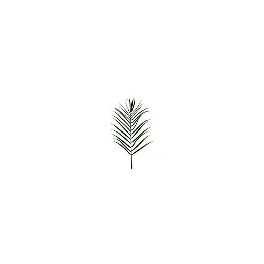 #artificialflowers #fakeflowers #decorflowers #fauxflowers#palm#frond#greenery