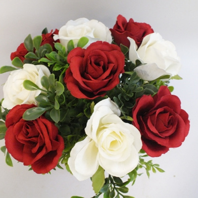 Red and white roses 2165