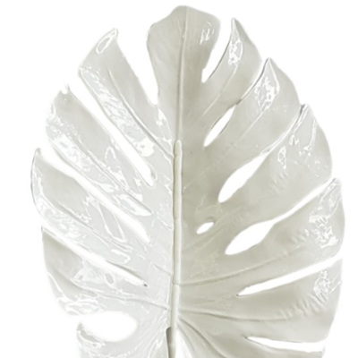 Philodendrum leaf 4299