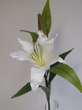 Lily whte 4413