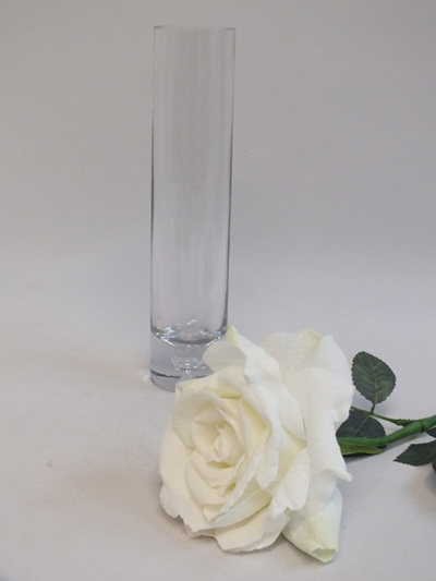 Rose  large white 1996
