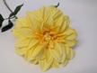 #artificialflowers#fakeflowers#decorflowers#fauxflowers#silk#yellow#dahlia