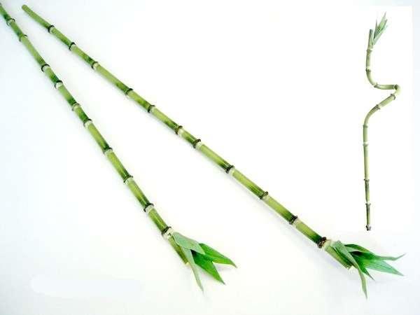 #artificialflowers#fakeflowers#decorflowers#fauxflowers#silkflowers#bamboo