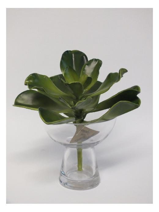 #artificialflowers#fakeflowers#decorflowers#fauxflowers#silkflowers#succulent#xl