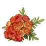 Ranunculus Posy 4466 Orange