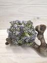 Seed Posy purple 4260