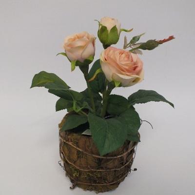 Mini Rose Peach 1483