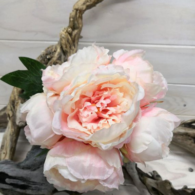 Peony Posy Pale Pink 4135