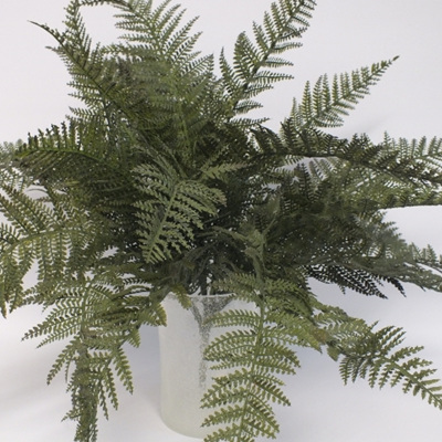 Fern NZ Large 1847