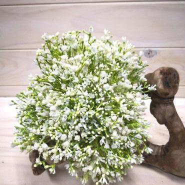 Gypsophila Posy White 4184