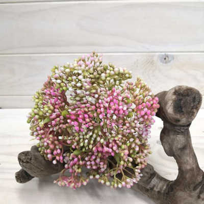 Seed Posy Pink 4259