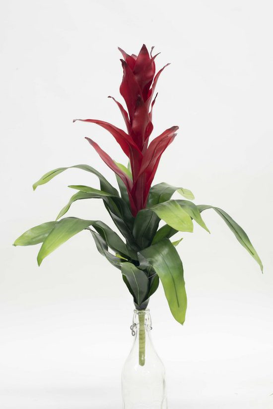 #artificialflowers#fakeflowers#decorflowers#fauxflowers#silkflowers#bromeliad