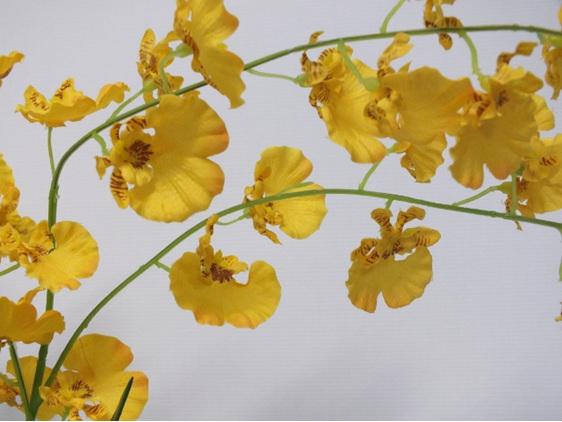 #artificialflowers#fakeflowers#decorflowers#fauxflowers#silkflowers#yellow#orchi