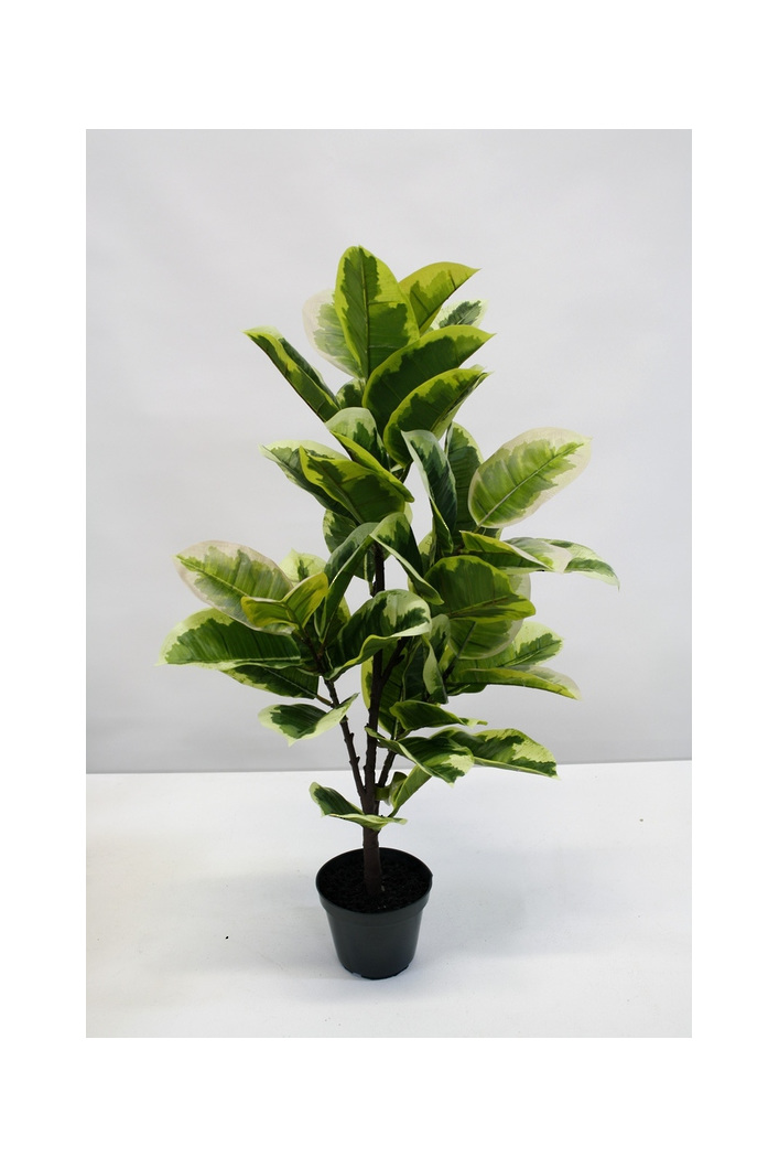 #artificialflowers#fakeflowers#decorflowers#fauxflowers#potted#rubberplant