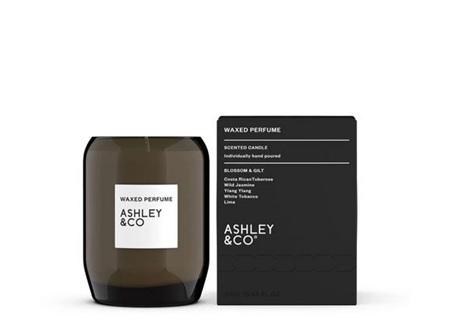Ashley & Co Waxed Perfume Candle - Blossom & Gilt