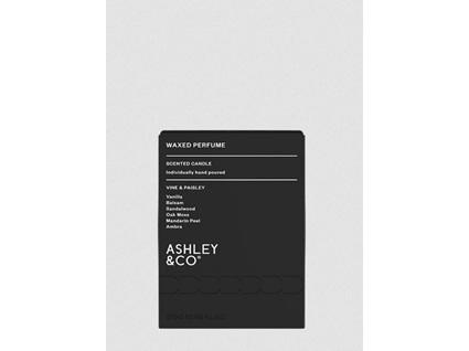 Ashley & Co Waxed Perfume Candle - Vine & Paisley