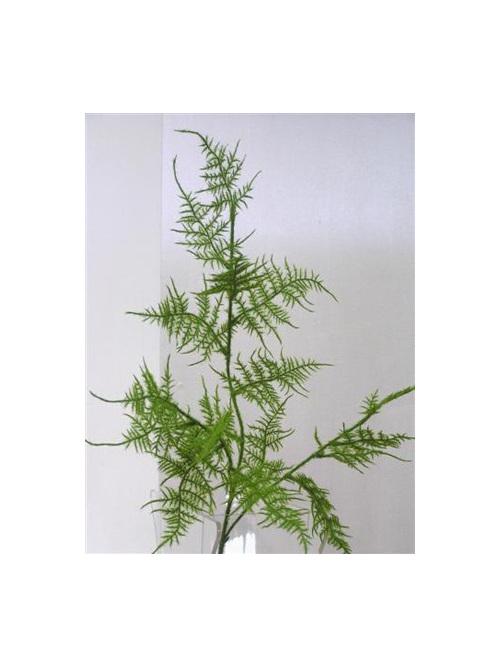 Asparagus fern silk artificial