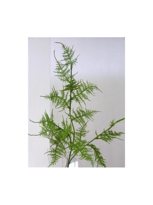Asparagus fern silk artificial