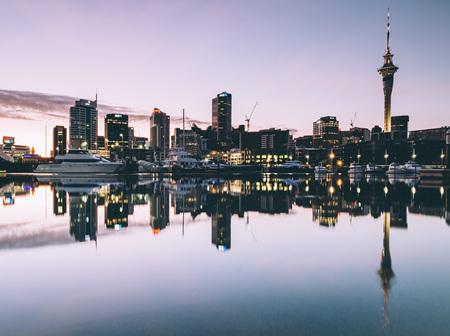 Auckland Studio Reviews