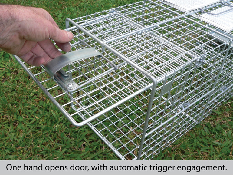 Automatic setting cage trap