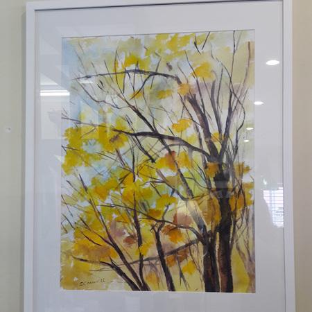 'Autumn Colours' Suzanne Connell