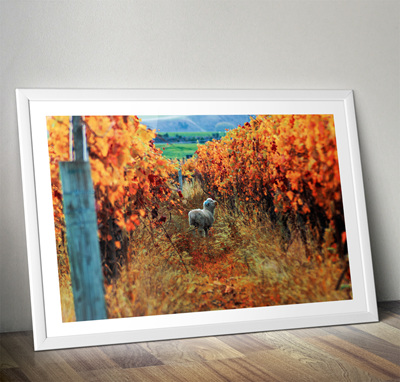 Autumn Feast Print