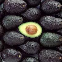 Avocado Certified Organic Small Each
