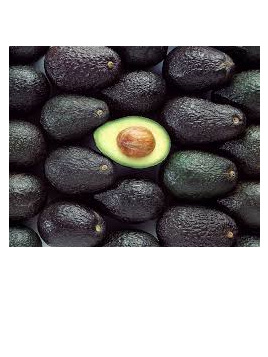 Avocado Certified Organic Small Each