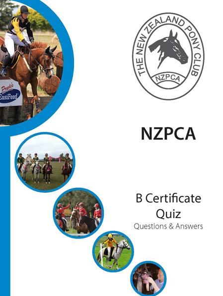 B Certificate Quiz