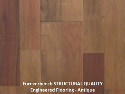 Foreverbeech™ Structural Quality Engineered Flooring 170x19mm