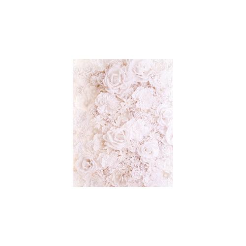 backdrop No.F4 Cream Florals