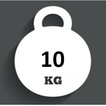 Ballast Weight 10kg