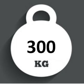Ballast Weight 300kg