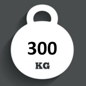 Ballast Weight 300kg INTERBLOC