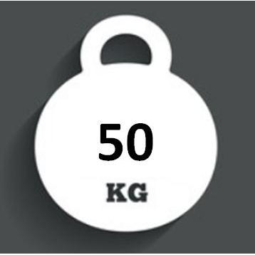 Ballast Weight 50kg