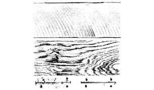 Barnwood Planks (2 sheets of stamps set) IOD Decor Stamp