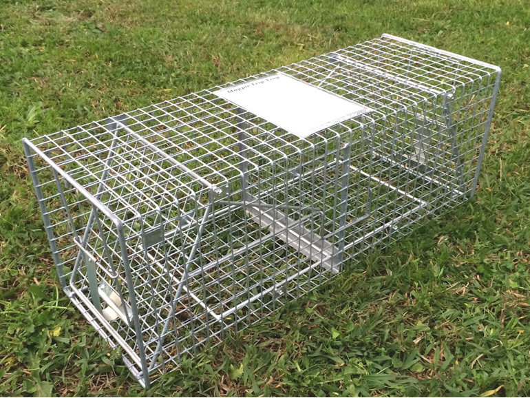 Basic version Magpie Trip Trap for small birds