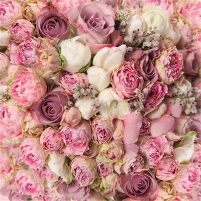 Back Drops Floral & Seasonal