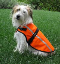Be Seen Hi Viz Dog Coats