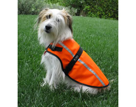 Be Seen Hi Viz Dog Coats