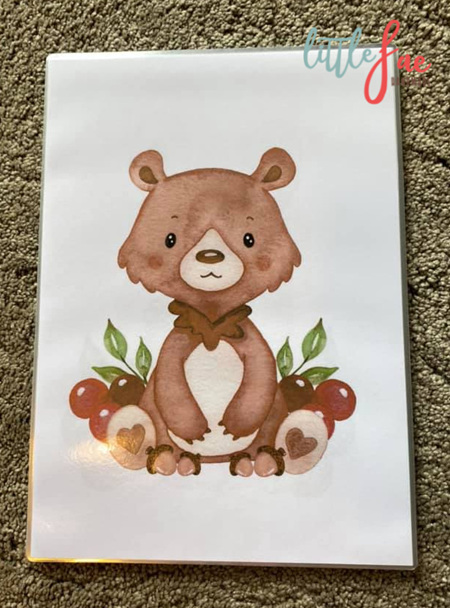 Bear Picture 3