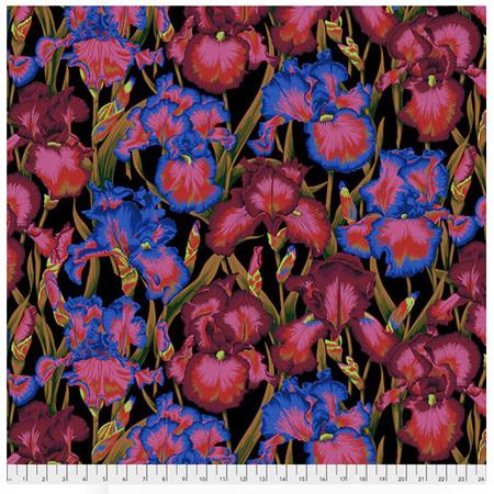 Bearded Iris Dark PWPJ105128