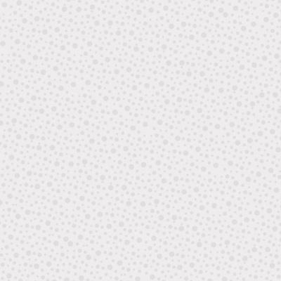 Bedrock Basics Spot Pearl White NT80430109