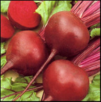 Beetroot for home winemaking